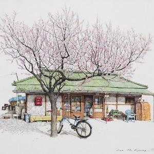 原来杂货店也能如此美丽清新,来自韩国的街头小店插画