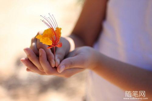 梦想无论大小,都应该给它一个绽放的机会 (9)