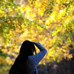 秋色烂漫,女子生香