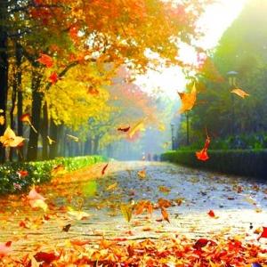 老舍:济南的秋天