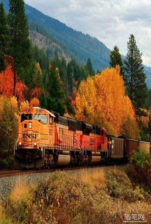 秋日列车,美呆了,有木有