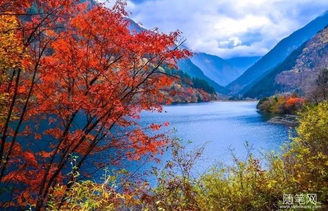 11月值得一游的9个地方,祖国遍地秋色浓