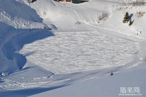 雪地里的麦田怪圈 (2)