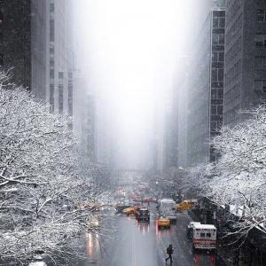 你的城市下雪了吗?