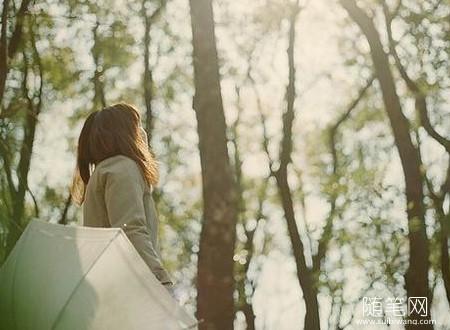 随笔心语:愿你执迷不悟时少受点伤,愿你幡然警醒时物是人是