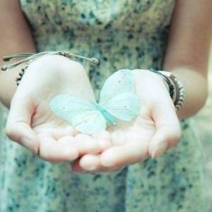 林清玄:蝴蝶的种子